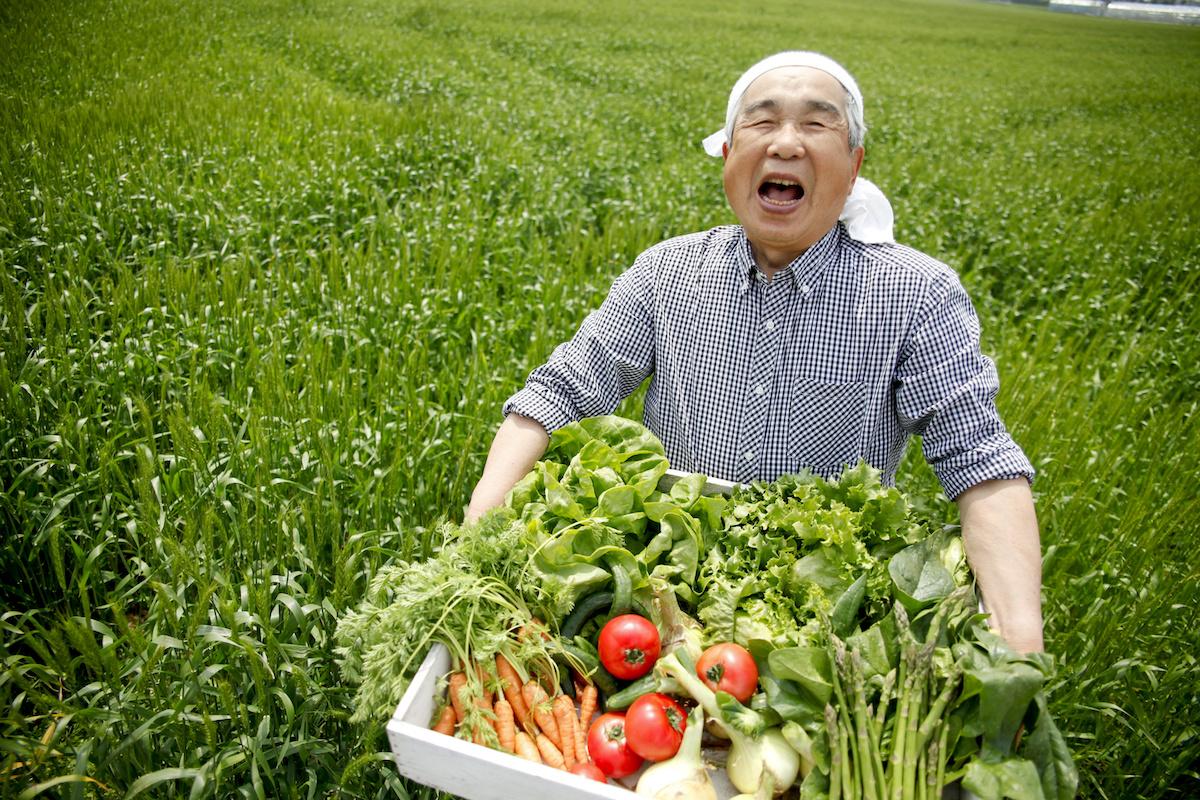 工務店集客ドットコム|新鮮な野菜